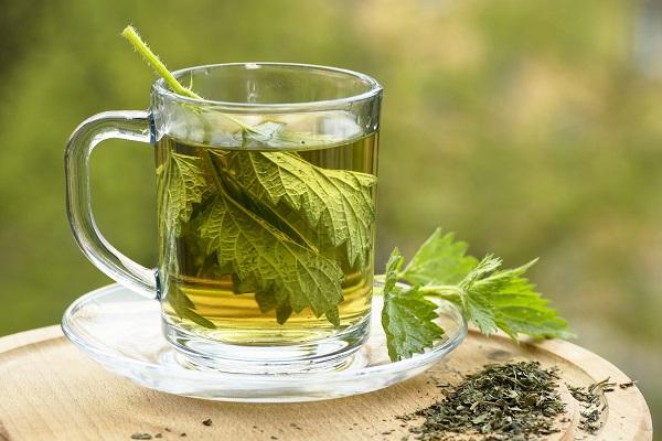 Чай с крапивы полезный для потенции