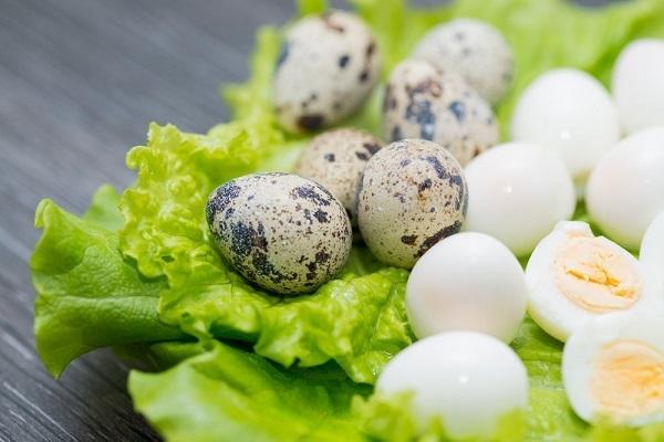 Употребление перепелиных яиц для улучшения потенции