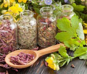 10 самых эффективных трав для лечения эректильной дисфункции