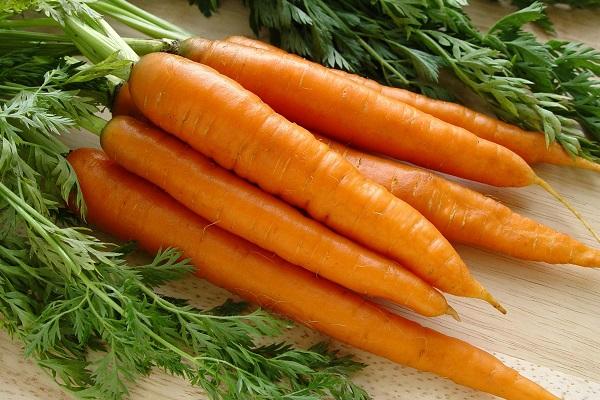 Полезная для мужского здоровья морковь