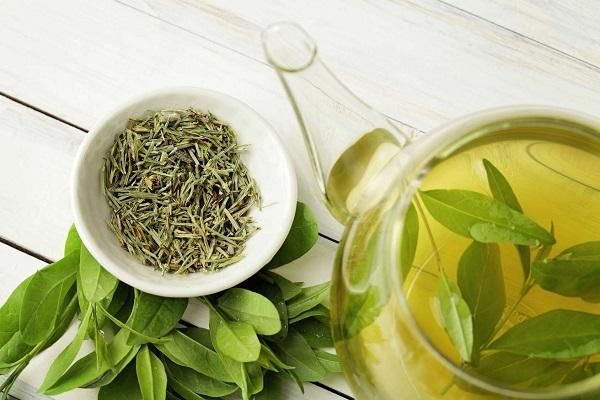 Полезный для эрекции зеленый чай