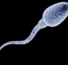 Лейкоцитоспермия — что это такое и как лечить заболевание мужчине?