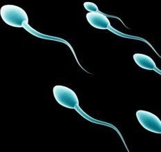 Олигоспермия — что это такое и как мужчине лечить заболевание?