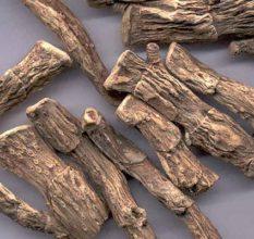 Аир болотный — полезное для потенции и мужского здоровья растение