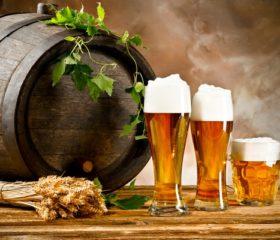 Влияет ли пиво на потенцию и как именно — что нужно знать мужчине?