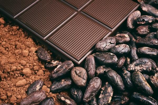 Из чего состоит горький шоколад?