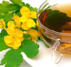 Как принимать чистотел при простатите, аденоме и раке предстательной железы?