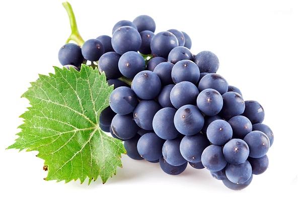 Полезный для мужчин виноград