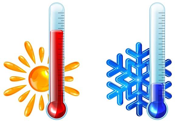 Влияние температуры на продолжительность жизни сперматозоидов