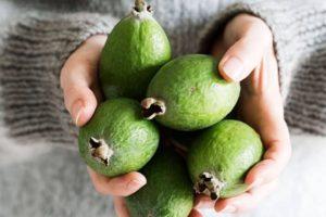 Польза и вред фейхоа для организма мужчины, как влияет на потенцию фрукт?